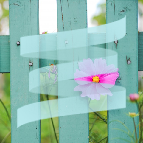 SpringServe logo over a turquoise fence
