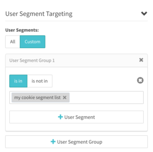 User Segment Targeting header with User Segments pillbox - Custom selected with User Segment Group expanded